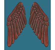 Leather Owl Wings  Photographic Print