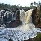 Nigretta Falls, Victoria (2) by DashTravels