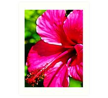 Deep Pink Fractalius Hibiscus Art Print