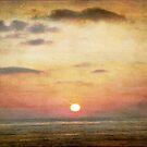 Winter Sunset in San Diego by Rozalia Toth