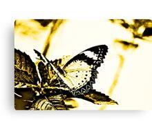 Art on wings Canvas Print