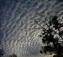 Sky Waves by James Dunshea