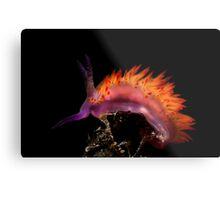 Flaming Tongue Metal Print