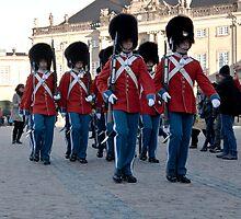 Royal Guards  by imagic