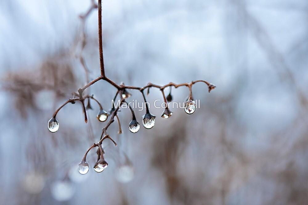 Raindrop Chandelier by Marilyn Cornwell