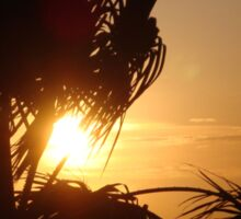 Silhouette Sunset Sticker