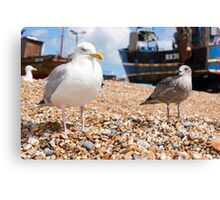 Seagulls at the Stade Canvas Print