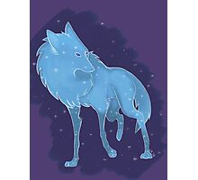 Galaxy Wolf Photographic Print