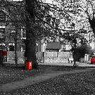 RED by Paul Benjamin