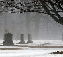 Shelter in the Fog by Monica M. Scanlan