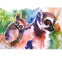 Mommy and Baby Lemur Photographic Print