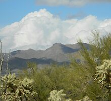 Clouds in the Desert by Kathleen Brant