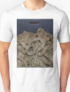 Special Giant Squid T-Shirt