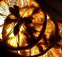Dried Beauty by Kornrawiee
