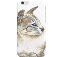 tabby point siamese cat iPhone Case/Skin