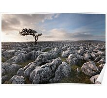 A Yorkshire Dales Limestone Desert Poster