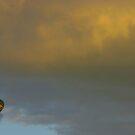 Hot Air Balloon by Paul Benjamin