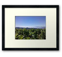 Marine Layer over Napa Valley Framed Print