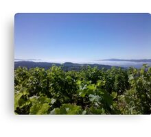 Marine Layer over Napa Valley Canvas Print