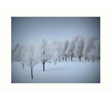 One More Fosted Tree Scene Art Print