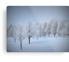One More Fosted Tree Scene Metal Print