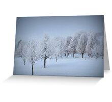 One More Fosted Tree Scene Greeting Card
