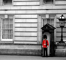 Buckingham Palace London Guard by RuthMoore