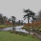 Bradgate Park, Leicestershire, in miniture by Paul Benjamin