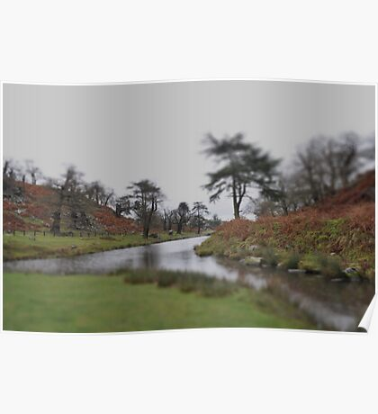 Bradgate Park, Leicestershire, in miniture Poster