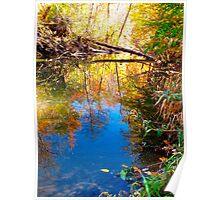 Upsidedown Autumn Poster