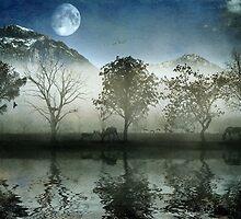 Misty Glen by marcus347
