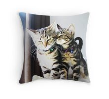 Cat Trouble! Throw Pillow