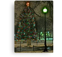 Boston Common Christmas Tree Canvas Print