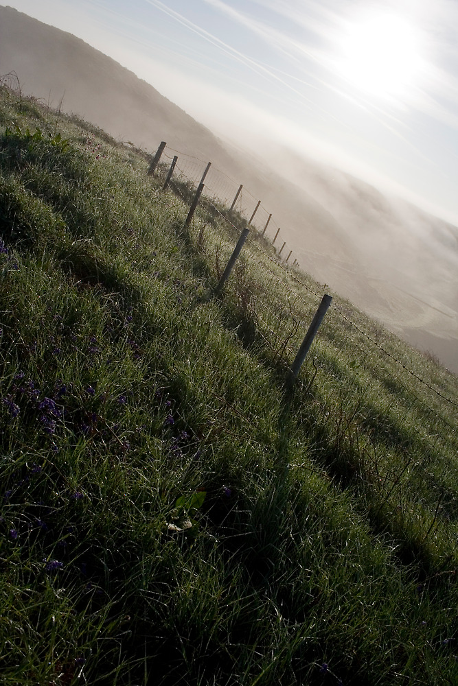Early Morning Mist by Adam Costello
