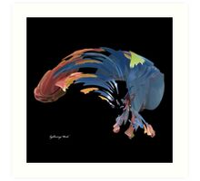 Multi-color Feather Art Print