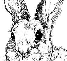 Rupert Rabbit by VintageGuinea