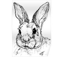 Rupert Rabbit Poster