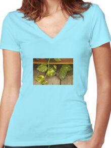 Wandering Women's Fitted V-Neck T-Shirt