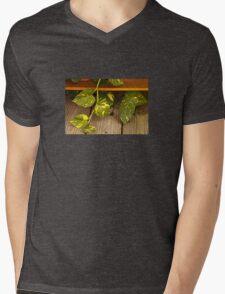 Wandering Mens V-Neck T-Shirt