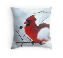 Red versus White. The Cardinal versus the cold winter Throw Pillow