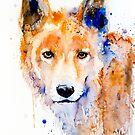 Dingo by Slaveika Aladjova