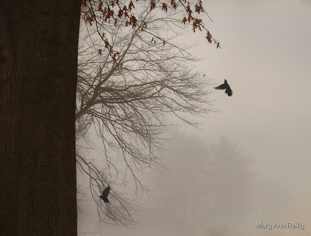 Hope is the Thing with Feathers by Mary Ann Reilly