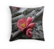 When stones blossom Throw Pillow