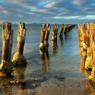 Evening Glow On the Old Pier by Cecily McCarthy