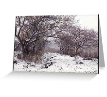 The Apples of Rattlesnake Vale Greeting Card