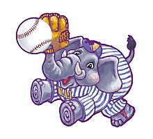 Wild Animal League Elephant Baseball  Photographic Print