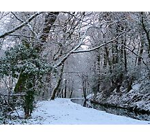 Winter woodland canal walk Photographic Print