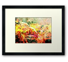 Sheep of Flame Framed Print