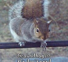 Groundhog Day - Don't need no groundhogs by WalnutHill