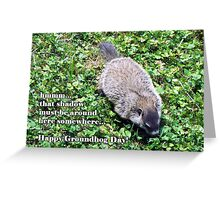 Groundhog Day - Where's the shadow? Greeting Card